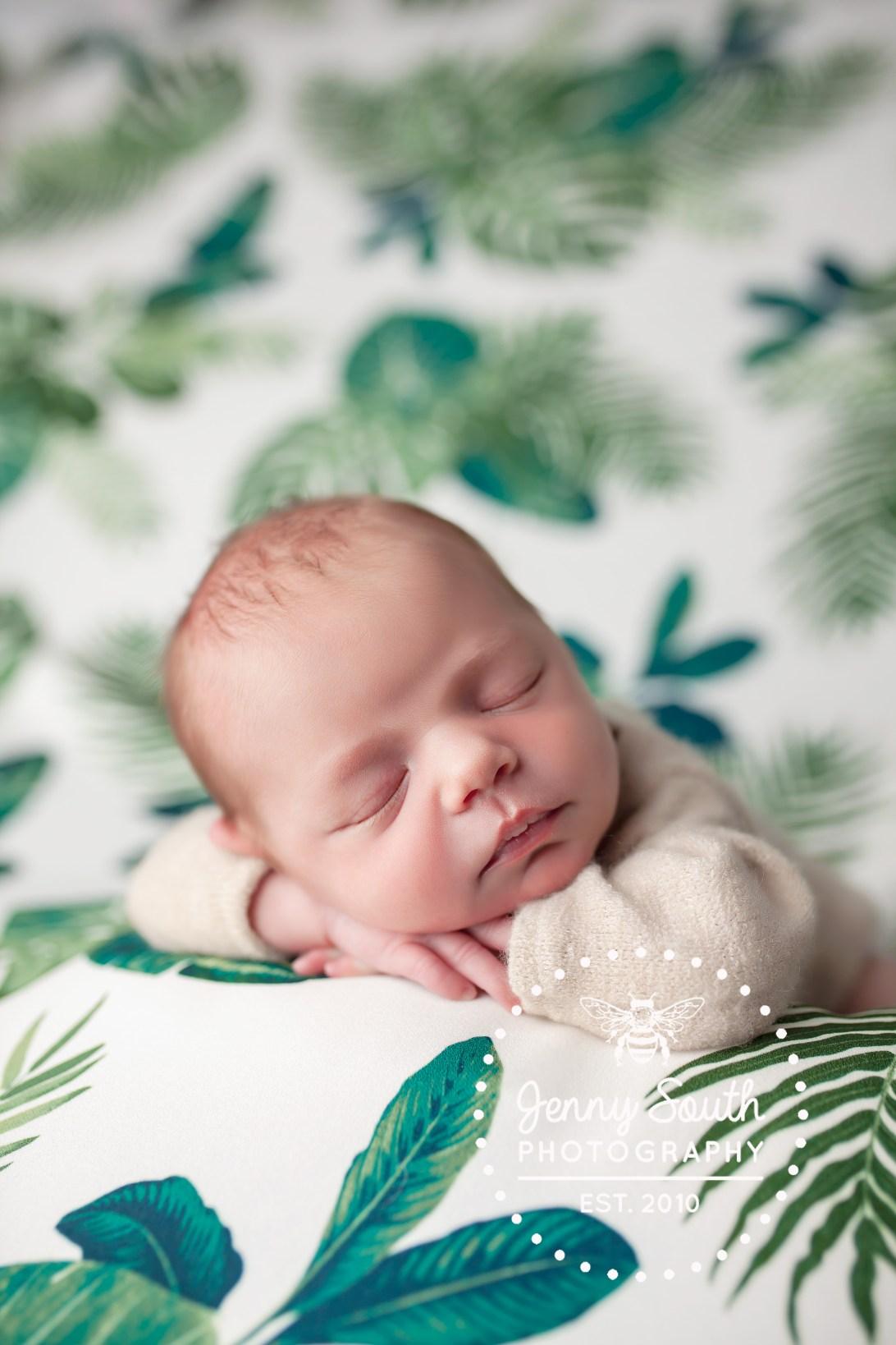 A Newborn lies sleeping on her hands against a botanical green and cream backdrop