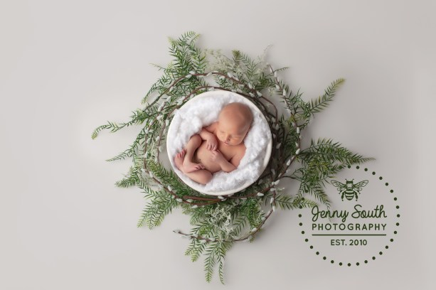 A newborn baby girl is surrounded by willow leaves and branches against a grey backdrop