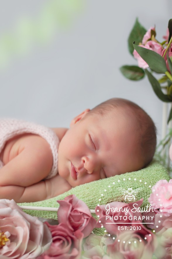 A baby girl is surrounded by roses as she sleeps through her newborn session.