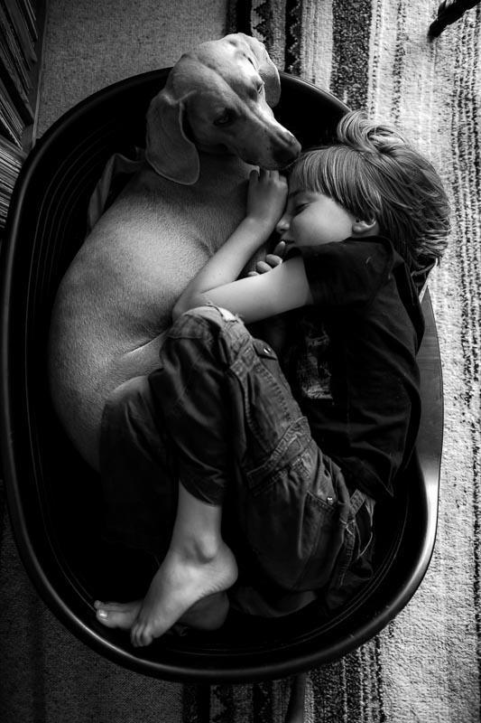 Boy-in-dog_basket_photographer_001