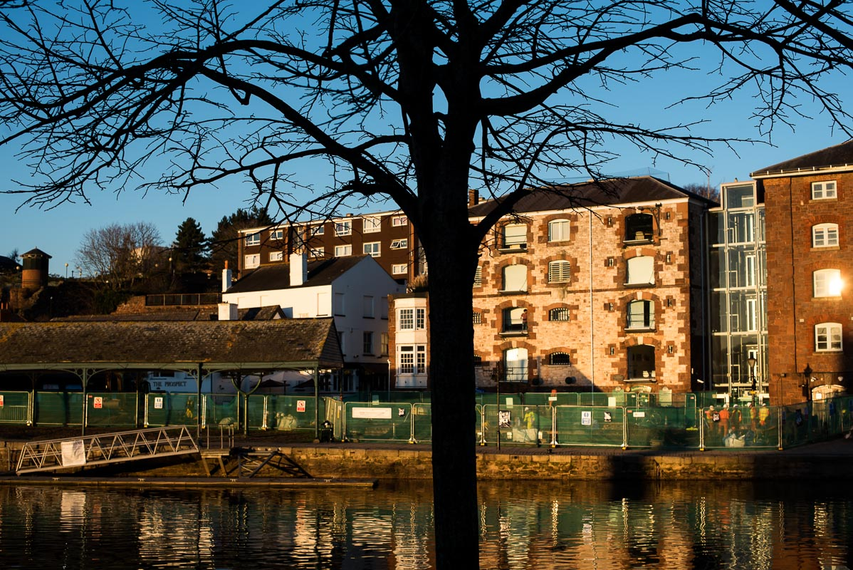 Exeter_trees_shapes_photographer_002