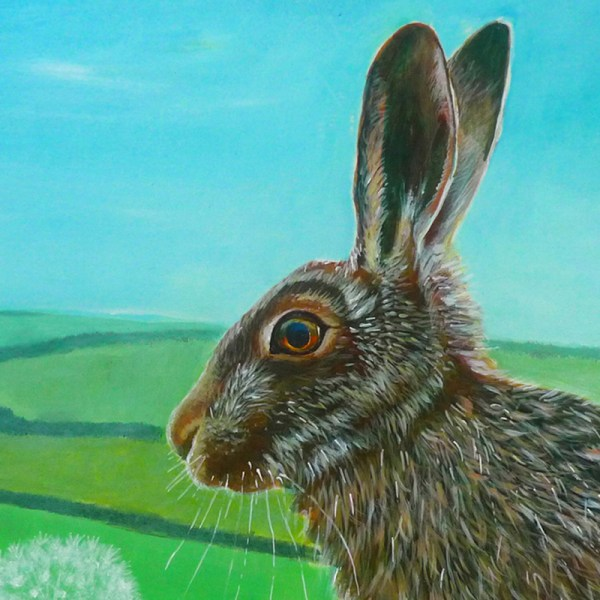 summer hare with fields in the background by jenny urquhart
