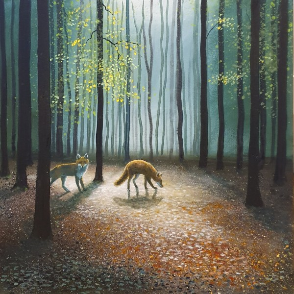 two foxes walking amongst beech trees in a wood by jenny urquhart
