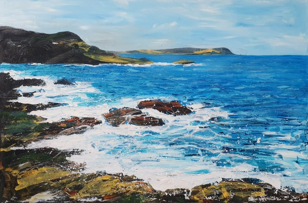 Polzeath to Stepper Point by Jenny Urquhart
