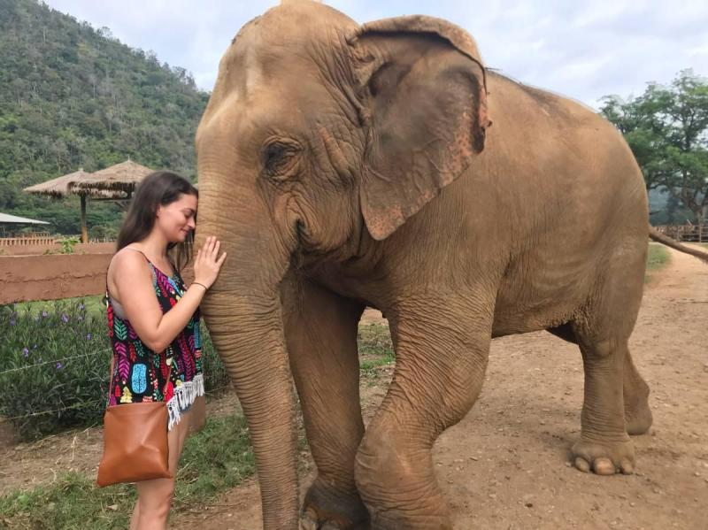 Touching moment face to face with an elephant