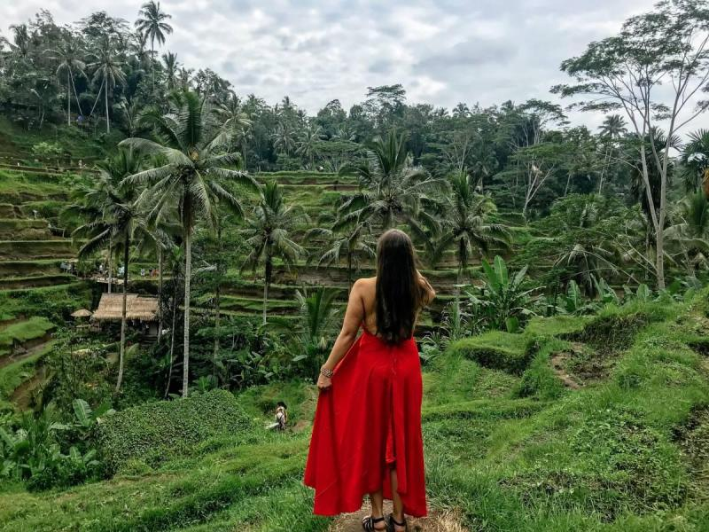 Looking out over the rice terraces of Ubud
