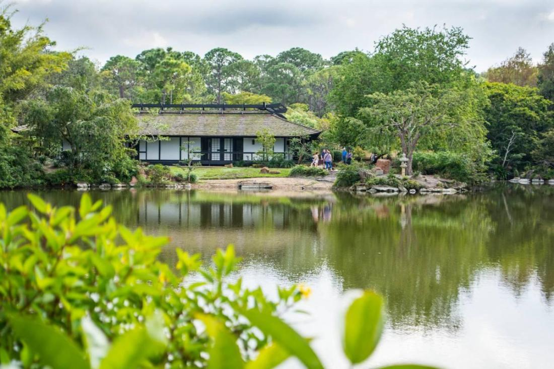 Japanese house and gardens