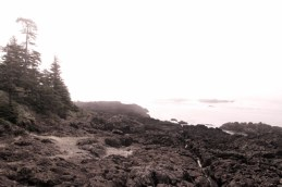 taking a stroll on the wild pacific trail in ucluelet. the fog horn sounded while we sat and ate lunch and we watched the fog roll in.