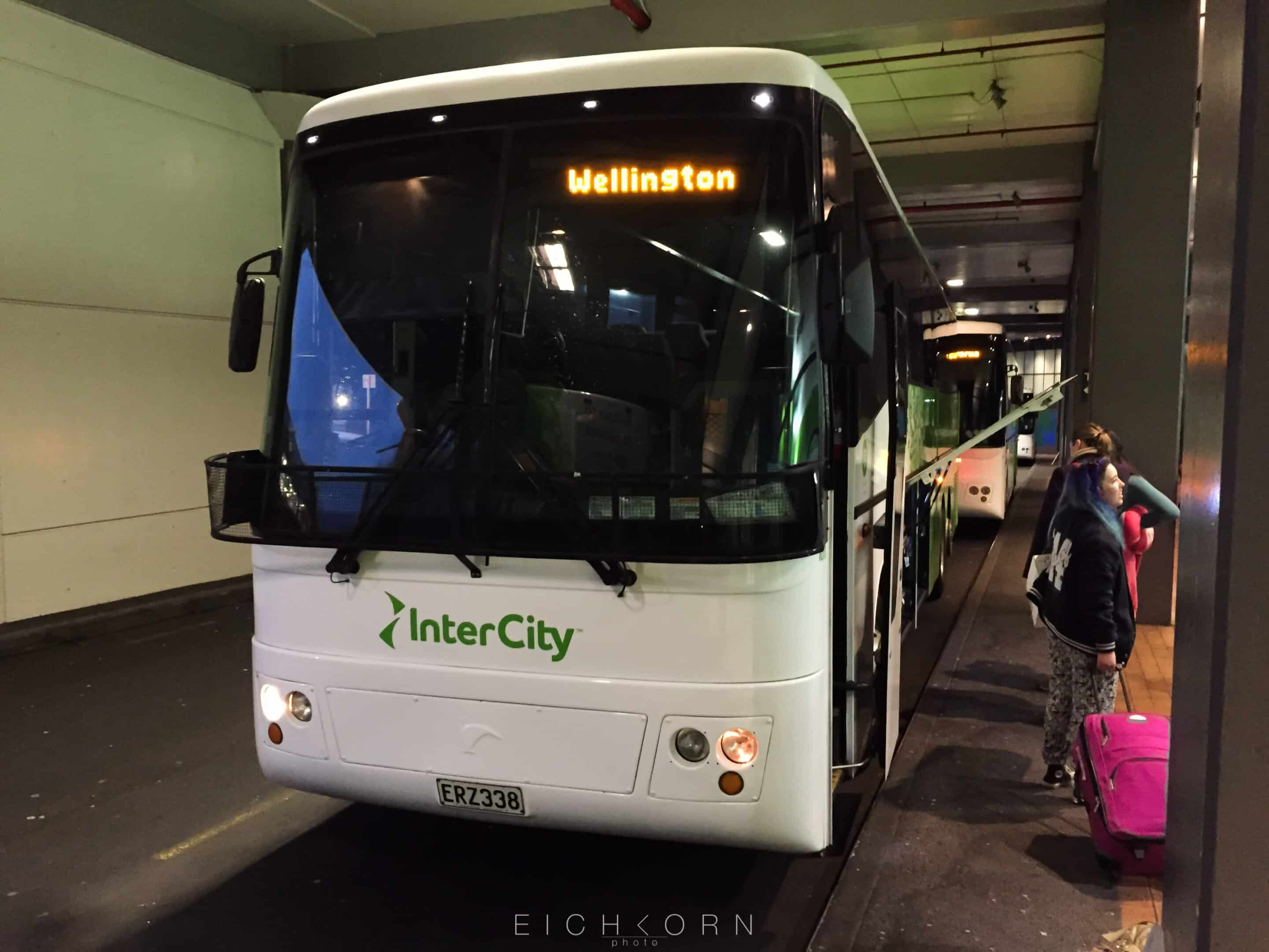 From Auckland to Napier by bus