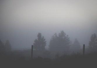 Day 7 Dark-9