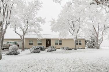 Todays-Photo-12-1-15-Frosty-Frost-5