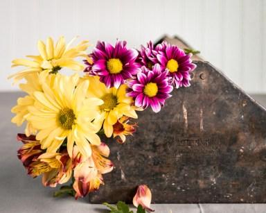 Flowers-1-26-16-8