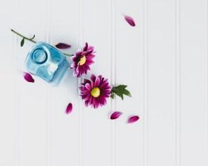 Flowers-1-29-16