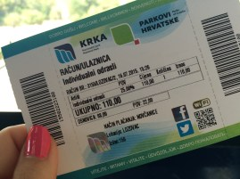 Official ticket to enter the park