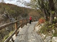 Hiking down the hillside