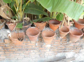 Pots built into the wall