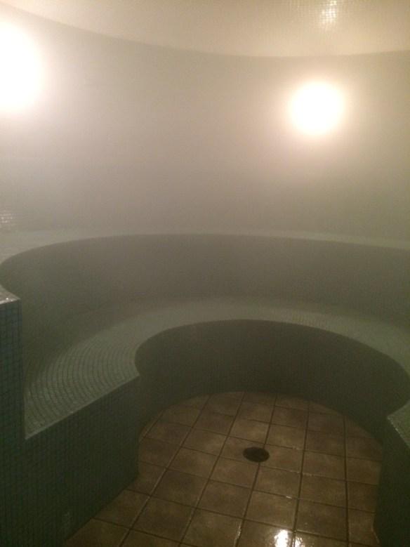 Aji steam room