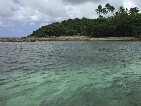 Monkey Island Water