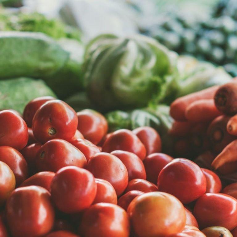 Les noms des légumes en provençal (de Laitue à Tomate)