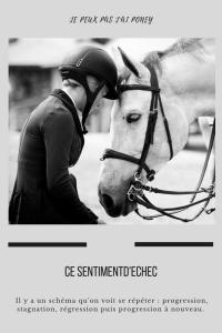 ce-sentiment-echec-equitation-cevalier-reflexion-blog-je-peux-pas-jai-poney-pinterest-lucio-landa