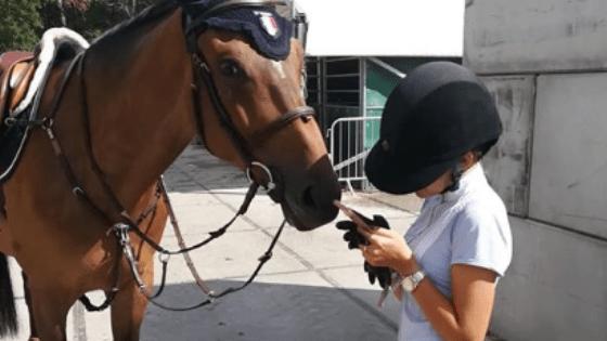 reseaux-sociaux-instagram-youtube-influenceurs-equestres-marketing-je-peux-pas-jai-poney-blog
