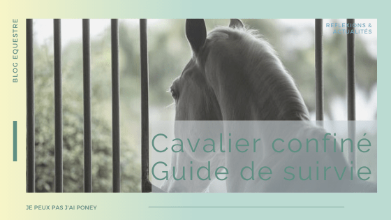 Cavalier confiné : guide de survie