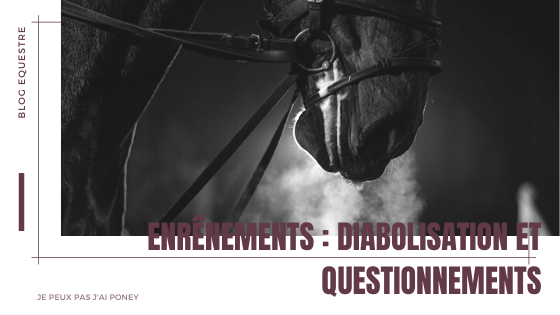 Enrênements : diabolisation et questionnements