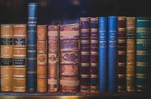 Image of a full bookshelf