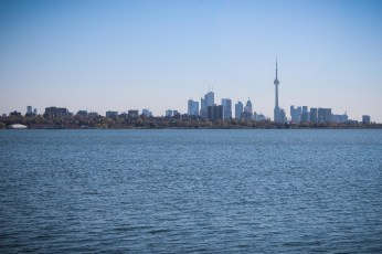 Toronto Skyline - View from the Humber Bay Park