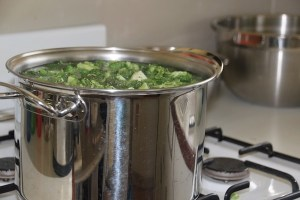 boiling pot of Veggies