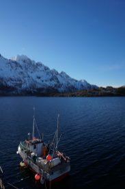 voyage-ski-lofoten-norvege1
