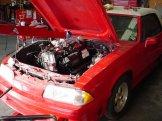Powerstroke Diesel Mustang