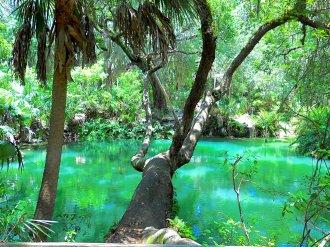 Green Springs 01