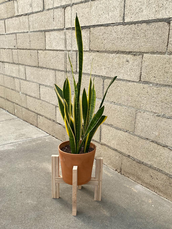 Schuler - Woodworking - Plant Holder