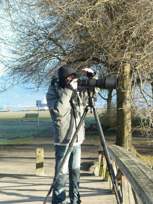 Jericho ponds are popular location for birders