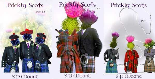 cover of prickly scots by s. p. mount