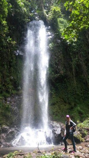 Christa Wojciechowski Waterfall