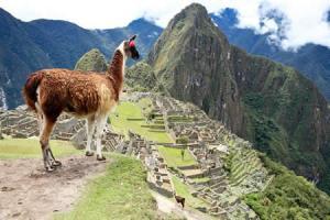 Machu_Picchu-450
