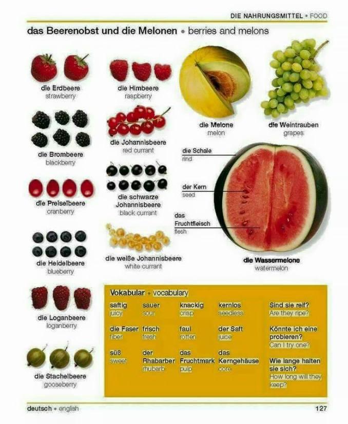 Aneka Buah Berry dan Melon Bahasa Jerman. Fruit in German. Das Obst