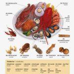 Makanan Laut Bahasa Jerman. German Seafoods