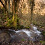 Kleine watervalletjes in een zijriviertje van de Maas in Hastière, gefotografeerd in een winters sfeertje. De lange sluitertijd geeft dynamiek aan het stomend beekje. De laagstaande winterzon geeft het achterliggende bos een warme gloed.