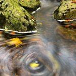 Draaikolk in het riviertje 'Sawe' in de Hoge Venen. Door de stroming van het water ontstaat er een draaikolk waarin afgevallen bladeren en luchtbelletjes meedraaien. Het gebruik van een lange sluitertijd maakt deze beweging ook zichtbaar in de foto. Verder zie je een paar bemoste rotsblokken waar het water tussendoor stroomt.