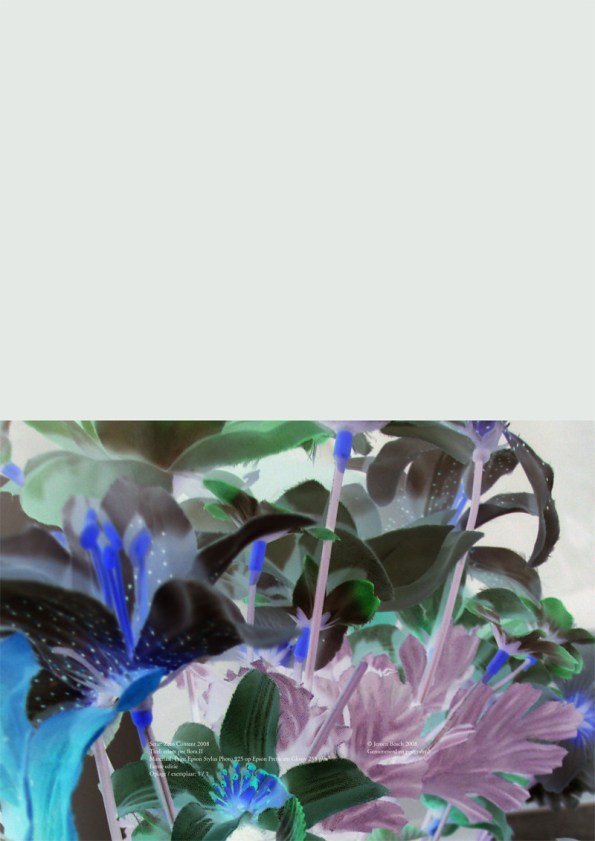 etiam per flora IV