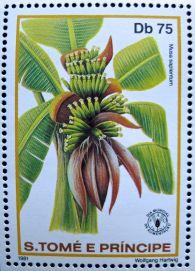 Republic of São Tomé and Príncipe, banana, Musa x sapientum, 1981