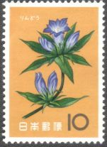 Japan, flowers, Gentian