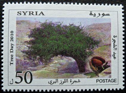 Syria, Tree Day, 2010