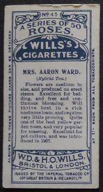Rose, Mrs Aaron Ward