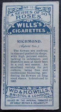 Rose, Richmond
