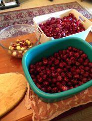 Converting rosella calyxes into jam