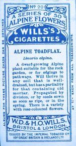 Alpine toadflax, Linaria alpina, Wills' Alpine Flowers, 1913